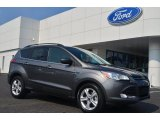2014 Sterling Gray Ford Escape SE 1.6L EcoBoost #84907851