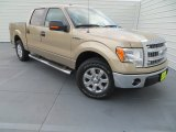 2013 Pale Adobe Metallic Ford F150 XLT SuperCrew #84907963