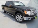 2013 Kodiak Brown Metallic Ford F150 XLT SuperCrew #84907962