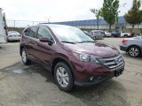 2013 Basque Red Pearl II Honda CR-V EX AWD #84908200