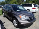 2011 Urban Titanium Metallic Honda CR-V SE 4WD #84986937