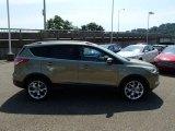 2014 Ginger Ale Ford Escape Titanium 2.0L EcoBoost 4WD #84992050