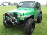 2004 Jeep Wrangler Electric Lime Green Pearl