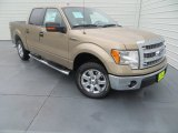 2013 Pale Adobe Metallic Ford F150 XLT SuperCrew #84992148