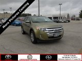 2013 Ginger Ale Metallic Ford Edge Limited #85024061