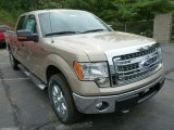 2013 Pale Adobe Metallic Ford F150 XLT SuperCrew 4x4 #85066546