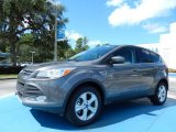 2014 Sterling Gray Ford Escape SE 2.0L EcoBoost #85066501