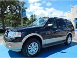 2013 Tuxedo Black Ford Expedition XLT #85066485