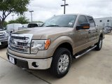 2013 Pale Adobe Metallic Ford F150 XLT SuperCrew 4x4 #85066390