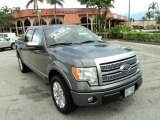 2010 Sterling Grey Metallic Ford F150 Platinum SuperCrew #85066473