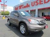2010 Urban Titanium Metallic Honda CR-V EX-L #85119716