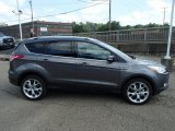 2014 Sterling Gray Ford Escape Titanium 1.6L EcoBoost 4WD #85119820