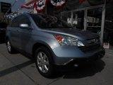 2009 Glacier Blue Metallic Honda CR-V EX-L 4WD #85120274