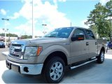 2013 Pale Adobe Metallic Ford F150 XLT SuperCrew #85119789