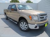 2013 Pale Adobe Metallic Ford F150 XLT SuperCrew #85120029