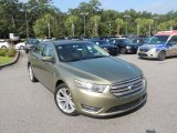 2013 Ginger Ale Metallic Ford Taurus SEL AWD #85184647