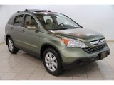2009 Green Tea Metallic Honda CR-V EX-L 4WD #85184730