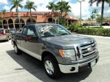 2011 Sterling Grey Metallic Ford F150 XLT SuperCab #85230846