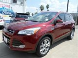 2014 Sunset Ford Escape Titanium 1.6L EcoBoost #85254676
