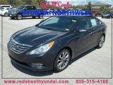 2013 Pacific Blue Pearl Hyundai Sonata Limited 2.0T #85269575