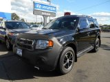 2009 Black Ford Escape XLT V6 #85356808