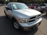 2009 Bright Silver Metallic Dodge Ram 1500 SLT Regular Cab #85356472