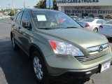 2009 Green Tea Metallic Honda CR-V EX #85409788