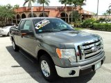 2011 Sterling Grey Metallic Ford F150 XLT SuperCab #85409892