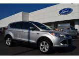 2013 Ingot Silver Metallic Ford Escape SE 1.6L EcoBoost #85409968