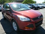 2014 Sunset Ford Escape S #85466107