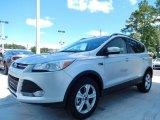 2014 Ingot Silver Ford Escape SE 2.0L EcoBoost #85592392