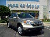 2007 Borrego Beige Metallic Honda CR-V EX-L #8531905