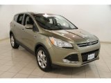 2013 Ginger Ale Metallic Ford Escape SEL 1.6L EcoBoost #85698567