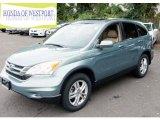 2010 Opal Sage Metallic Honda CR-V EX-L AWD #85744773