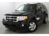 2009 Black Ford Escape XLT V6 4WD #85777458