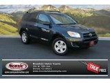 2010 Black Forest Pearl Toyota RAV4 I4 4WD #85853986