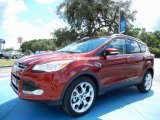 2014 Sunset Ford Escape Titanium 2.0L EcoBoost #85854135