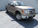 2013 Pale Adobe Metallic Ford F150 XLT SuperCrew 4x4 #85854253