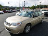 2007 Sandstone Metallic Chevrolet Malibu LS Sedan #85854219