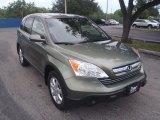 2008 Green Tea Metallic Honda CR-V EX-L 4WD #85907966
