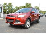 2014 Sunset Ford Escape SE 1.6L EcoBoost #85907701