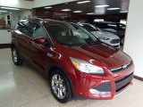 2014 Sunset Ford Escape SE 2.0L EcoBoost 4WD #86037286