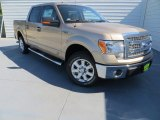 2013 Pale Adobe Metallic Ford F150 XLT SuperCrew #86116329