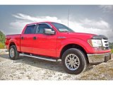 2010 Vermillion Red Ford F150 XLT SuperCrew 4x4 #86116519