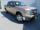 2013 Pale Adobe Metallic Ford F150 XLT SuperCrew #86116334