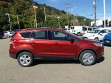 2014 Sunset Ford Escape SE 2.0L EcoBoost 4WD #86158309