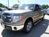 2013 Pale Adobe Metallic Ford F150 XLT SuperCrew #86206676