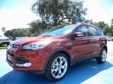 2014 Sunset Ford Escape Titanium 2.0L EcoBoost #86206759