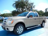 2013 Pale Adobe Metallic Ford F150 XLT SuperCab #86206736