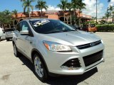 2013 Ingot Silver Metallic Ford Escape SEL 2.0L EcoBoost #86260611